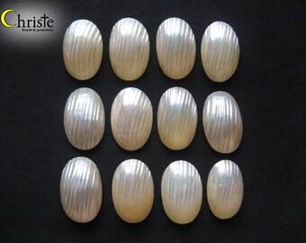 Osmena Pearls 6 Small 34 White Nautilus,Osmina