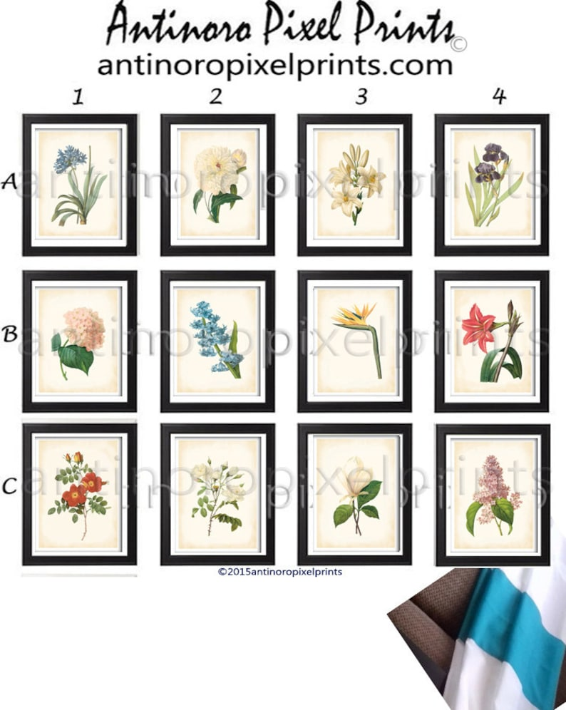 Multi Color Antique Creme Colored Botanical Floral Damask Wall  Vintage Modern Wall Art Prints 8x10  #249670591 Set of Any 12