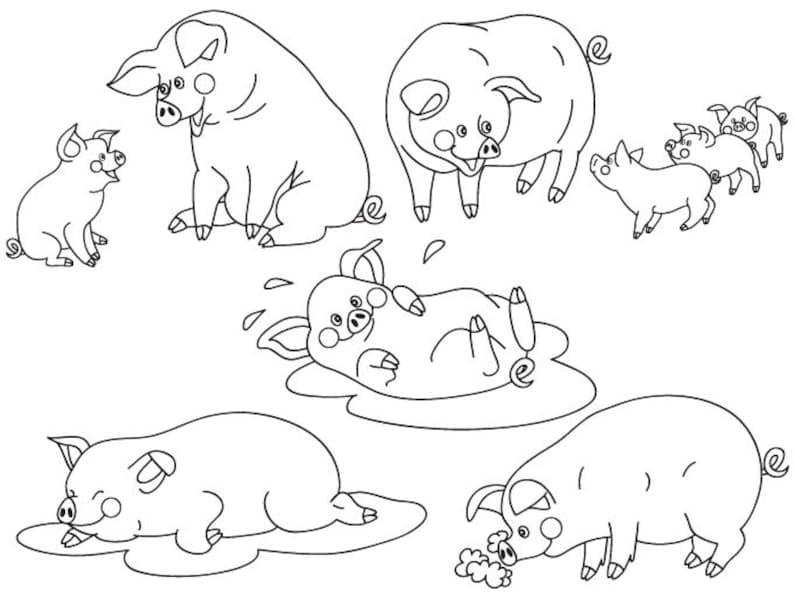 Pigs Clipart Digital Vector Farm Animal Baby Pig Pigs