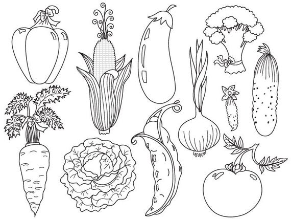 vegetables clipart digital vector tomato carrot pepper