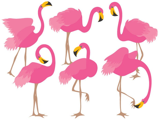 flamingo clipart digital vector flamingo bird exotic etsy rh etsy com flamenco clipart flamingo clip art free