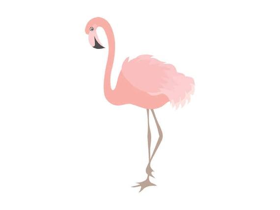 flamingo clipart digital flamingo bird exotic coral etsy rh etsy com flamingo clip art free funny flamingo clip art images