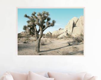 Desert Print, Joshua Tree print, Cactus Photo, Desert Wall Art, Desert Printable, Joshua Tree Photography Download, Southwestern Decor d13cl
