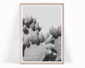 Cactus Art Print, Cactus Printable, Cactus Wall Art, Large Wall Art, Cactus Art Download Black and White Photography Art Prickly Pear pp5bwp