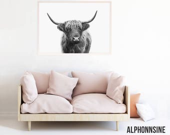 Highland Cow Print, Highland Cow Art, Highland Bull Black and White Printable, Digital Download, Photo, Poster, Picture, Photography, hc2lbw