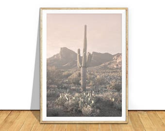 Desert Print, Cactus Photo, Cactus Print, Desert Cactus Photography Wall Art, Cactus Printable Art, Desert Cactus Download Southwestern d7pp