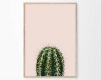 Cactus Print, Cactus Printable, Pink Green Cactus Photography Digital Download, Succulent, Dorm Room Decor Wall Art Prints Poster Print ec1c