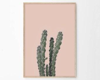 Cactus print, Wall Art Prints, Succulent, Printable Art, Digital Download, Minimalist Decor, Dorm Decor, Cacti, Cactus Photography, ec5c
