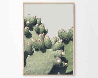 Prickly Pear Cactus Print, Cactus Printable, Cactus Photography Wall Art, Southwestern Home Decor, Cactus Art Download Boho Art Prints pp5cp