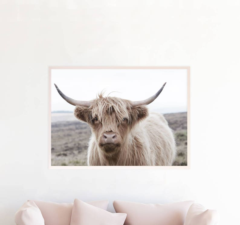 Highland Cow Print Highland Cow Download Highland Cow Etsy