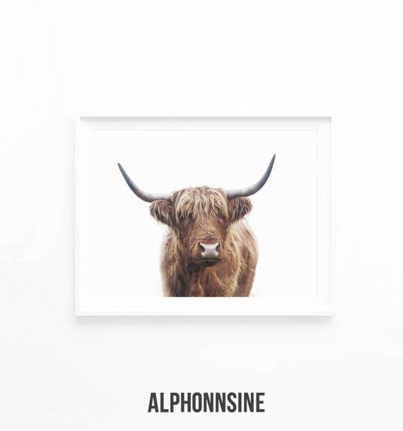 Highland Bull Print Cow Printable Wall Art