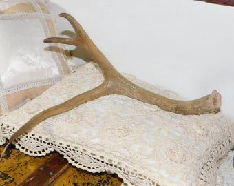 Deer Antler, Deer Antlers, Country Decor, Farm House Decor, Vintage Home Decor, Crafts, Or Use for Prop