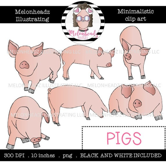 Pigs Clip Art Minimal Style Mini Etsy
