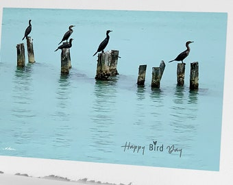 Happy Bird Day Birthday Card for Bird watcher lover nature 4x6 picture on 5x7 greeting card for men and women boy girl wife husband him her