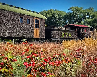 MosaïCanada 150 Engine Cpr 374 PRINT ACRYLIC or CANVAS Mosaïculture Train Locomotive All Aboard Nature Gatineau Botanical sculpture Photo
