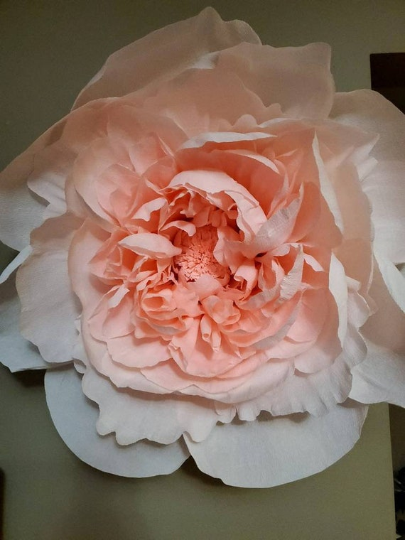 Custom Order Giant Crepe Paper Flower Large Peony Rose Cream Salmon Dusty Pink Blush Mauve Peach Wall Mounted Wall Decor