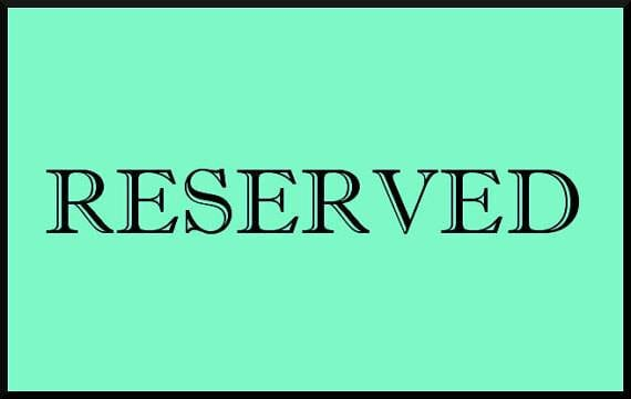 RESERVED for Rachel Custom Order Display Case