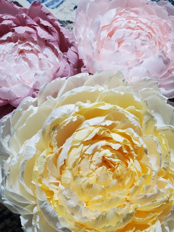 Custom Giant Paper Self Standing Flower Large Peony Rose Poppy Flower Royal Teal Yellow Purple Red Crimson White Ivory Cream Pink Blue Green