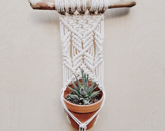 Wall Plant Hanger