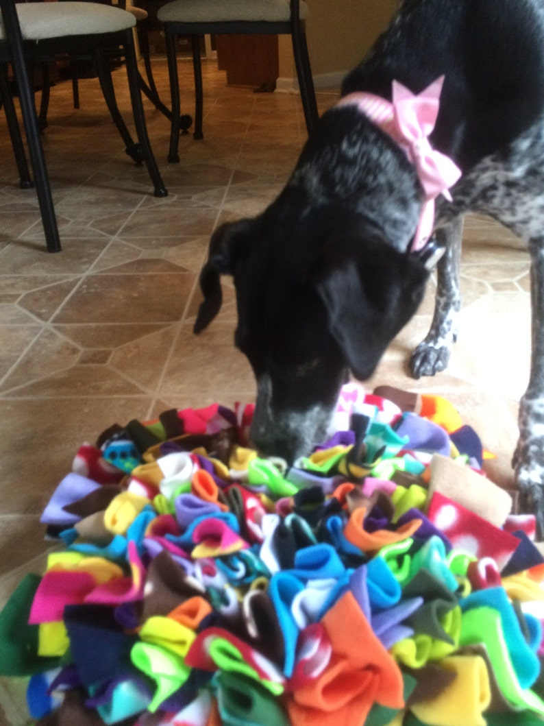 Dog Snuffle Mat Treat Puzzle Large image 0