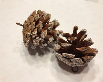 5 natural with snow edge pine cone ornaments, on avarage 2 - 2 1/2 inch