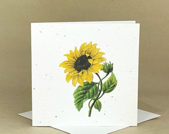 Plantable Eco-Friendly Seeded Card / Beautiful Sunflower #1
