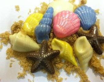 Chocolate Seashells (50 Pieces)