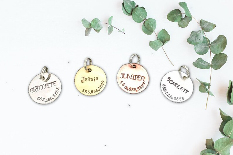 3/4 Cat ID Tag for Collar Small to Medium Sized Pet ID image 0