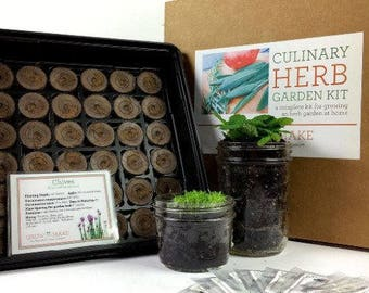 Culinary Herb DIY Garden Kit - Learn how to grow your own herbs at home!