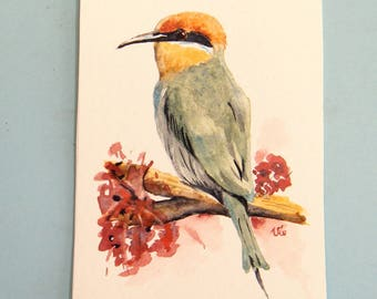 Bohms Bee Eater,  watercolor painting of a Mozambican bird in small format