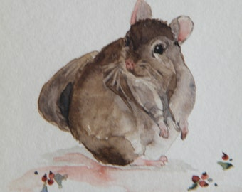 Chinchilla original watercolor painting by Vivienne Edwards