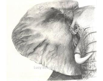 Elephant // Print of Pencil Drawing