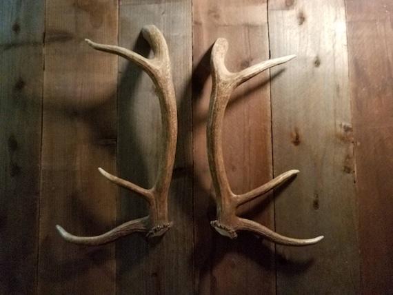 Killer Shed Elk Antler Handle Set Matched For Door Pulls Refrigerator Tree  House Man Cave Gun Room Hunting Lodge Cabin Log Home Barn Doors From ...