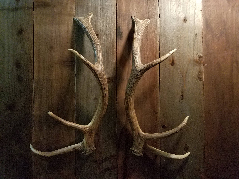 Charmant Nice Shed Elk Antler Handle Set Matched For Door Pulls Refrigerator Tree  House Man Cave Gun Room Hunting Lodge Cabin Log Home Barn Doors From  AntlerArtisans ...