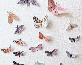 Small paper moths