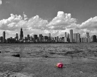 Skyline with Rose
