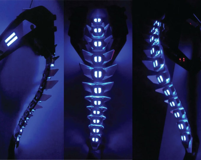 Deluxe Biomechanical Spinal Armor
