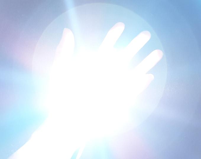 Palm Lights - Ultra Powerful 20 Watt LEDs