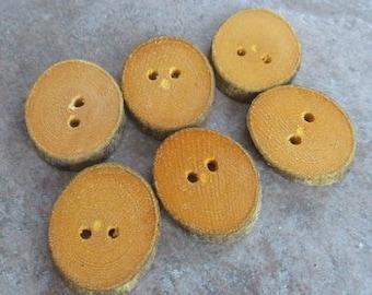 6 Oval Beech Branch Buttons