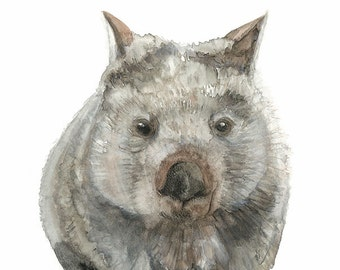 Common Wombat Print, Australian Native Animal Art, Australiana Fauna Home Decor, Marsupial Watercolour Painting, 5 x 7, 8 x 10, A4