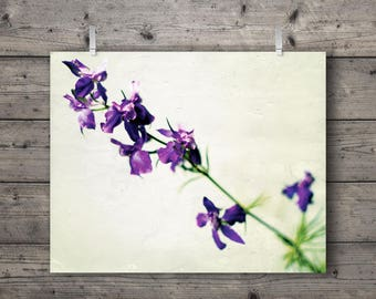 Wild Violets / Nature Photography Print / Green and Purple Flowers / Abstract Painterly Colorful Floral Home Decor / Wildflowers Wall Art