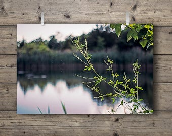 The Lakes No. 2 / Lakeside Series Photography Print Tallgrass Prairie Wetlands & Woodlands Nature Landscape Country Rustic Outdoors Wall Art