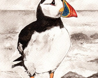Puffin card - Puffin birthday card - Puffin gift - Indian ink puffin painting - puffin art