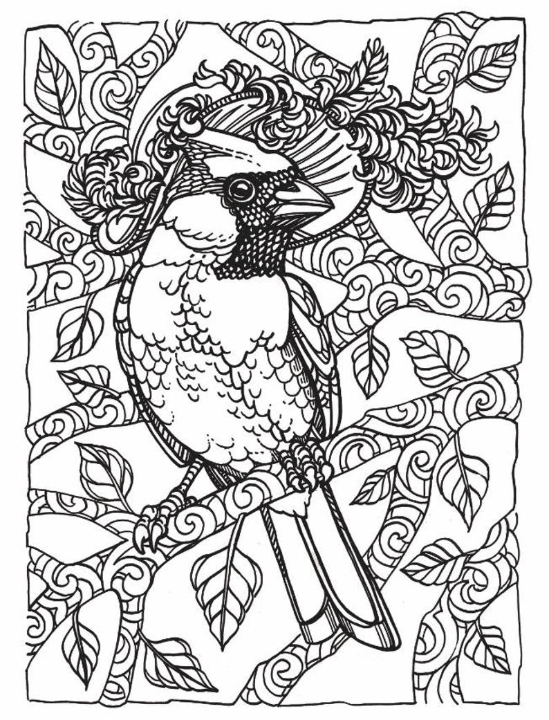Fancy Bird Coloring Page Cardinal Bird Wearing Hat Etsy