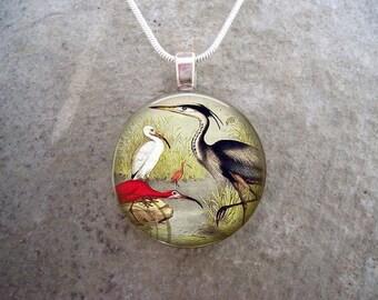Water Bird Jewelry - Glass Pendant Necklace - Victorian Bird 36