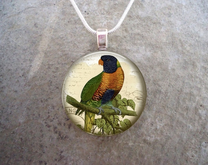 Parrot Jewelry - Glass Pendant Necklace - Free Shipping - Style BIRD21