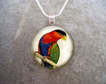 Tri-Coloured or Black Capped Lory Jewelry - Glass Pendant Necklace -  - Free Shipping - sku BIRD31