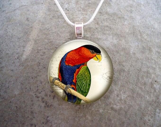 Bird Jewelry - Glass Pendant Necklace - Victorian Bird 31
