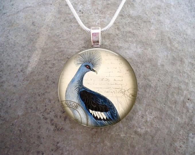 Bird Jewelry - Glass Pendant Necklace - Free Shipping - Style BIRD41