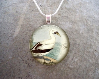 Wading Bird Jewelry - Glass Pendant Necklace - Free Shipping - Style BIRD19